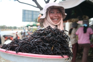 Fried spiders, Cambodia